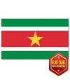 Landen vlaggen van Suriname